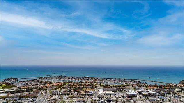24622 Harbor View Drive 59C, Dana Point, CA 92629 (#LG21081582) :: Zen Ziejewski and Team