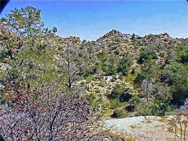 0 Omega, Yucca Valley, CA 92284 (#JT21082490) :: Zen Ziejewski and Team