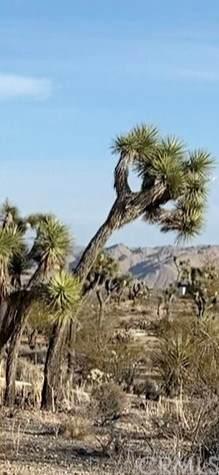 58295 Sun Via Drive, Yucca Valley, CA 92284 (#JT21078369) :: RE/MAX Empire Properties