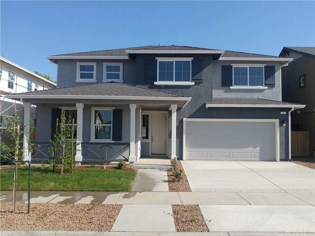 51 Bentwater Drive, Chico, CA 95973 (#SN21083118) :: The Laffins Real Estate Team