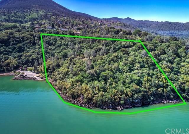 7180 Soda Bay Road, Kelseyville, CA 95451 (#LC21083038) :: Mint Real Estate