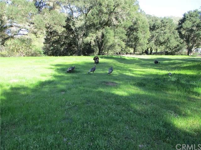 5755 Llano - Photo 1