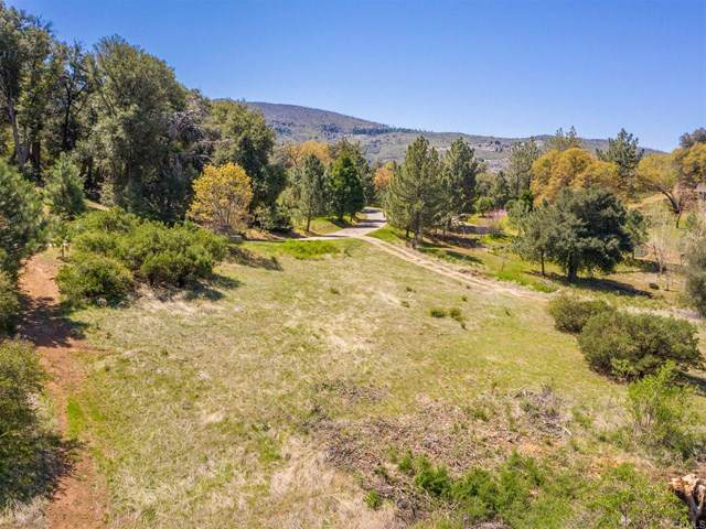 0 Toyon Mountain Rd., Julian, CA 92036 (#NDP2104286) :: Compass