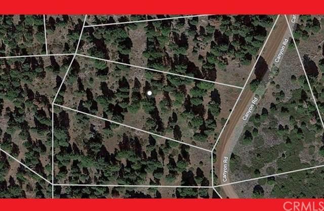 0 Canyon Road, Alturas, CA 96101 (#CV21084914) :: Corcoran Global Living