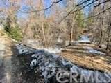 0 Mountain Home Creek Road - Photo 3