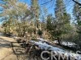 0 Mountain Home Creek Road - Photo 6