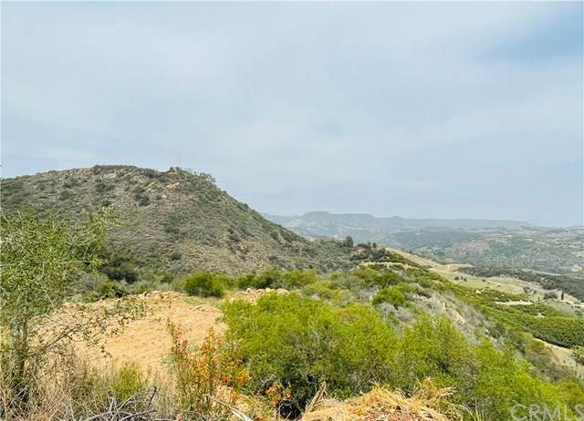 2694 Doville Ranch Road, Fallbrook, CA 92028 (#JT21081569) :: The Marelly Group | Compass