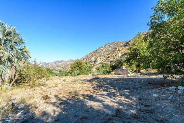 2407 Stonyvale Road, Tujunga, CA 91042 (#P1-4356) :: The Brad Korb Real Estate Group