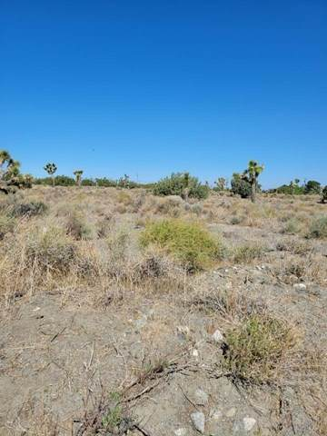 0 Wagon Train Road, Phelan, CA 92371 (#534496) :: Go Gabby
