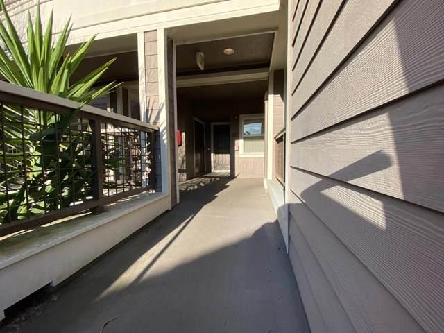 524 Swallowtail Court - Photo 1