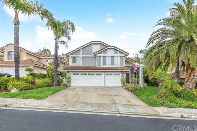32052 Camino Del Cielo, Trabuco Canyon, CA 92679 (#SW21083324) :: Legacy 15 Real Estate Brokers
