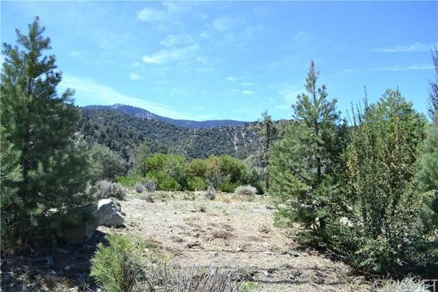 14820 Ward, Pine Mountain Club, CA 93222 (#SR21086773) :: RE/MAX Empire Properties
