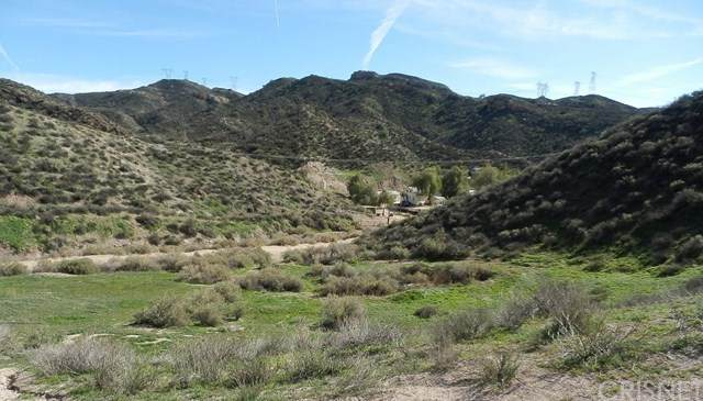 0 Tick Canyon Rd, Agua Dulce, CA 91390 (#SR21087019) :: Team Forss Realty Group