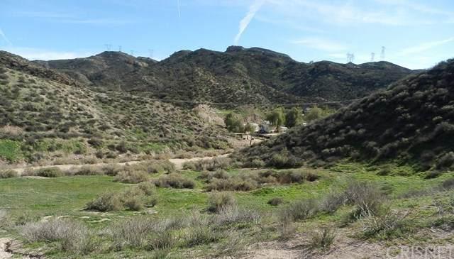 0 Tick Canyon Rd, Agua Dulce, CA 91390 (MLS #SR21087019) :: CARLILE Realty & Lending