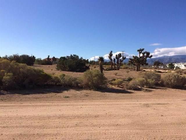 0 Locust Road - Photo 1