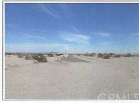 0 Gobi Ave, Big River, CA 92242 (#MB21090191) :: Team Forss Realty Group