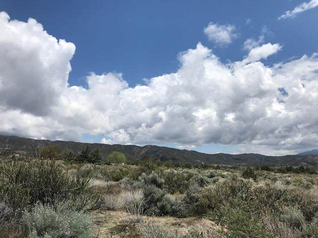 0 Mitchell And Bohlen Road, Anza, CA 92539 (#219061250DA) :: Realty ONE Group Empire