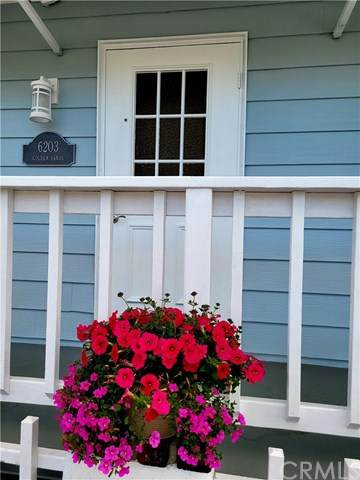 6203 Golden Sands Lane, Long Beach, CA 90803 (#PW21091483) :: Mainstreet Realtors®