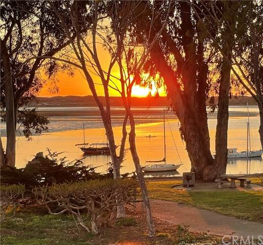 172 Bayshore Drive, Morro Bay, CA 93442 (#SC21088992) :: Team Forss Realty Group