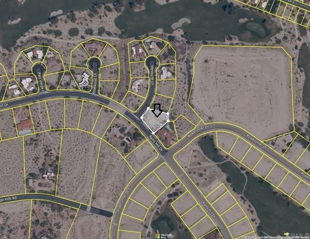Mesquite Lane, Borrego Springs, CA 92004 (#NDP2104723) :: Power Real Estate Group