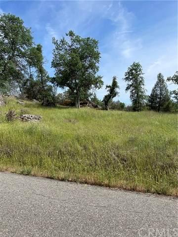 4371 Burl Drive, Mariposa, CA 95338 (#MP21092562) :: Mainstreet Realtors®