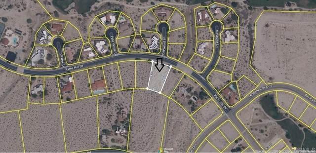 Rams Hill Drive, Borrego Springs, CA 92004 (#NDP2104735) :: Compass