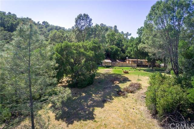 6995 Running Deer Road, Paso Robles, CA 93446 (MLS #NS21089058) :: CARLILE Realty & Lending