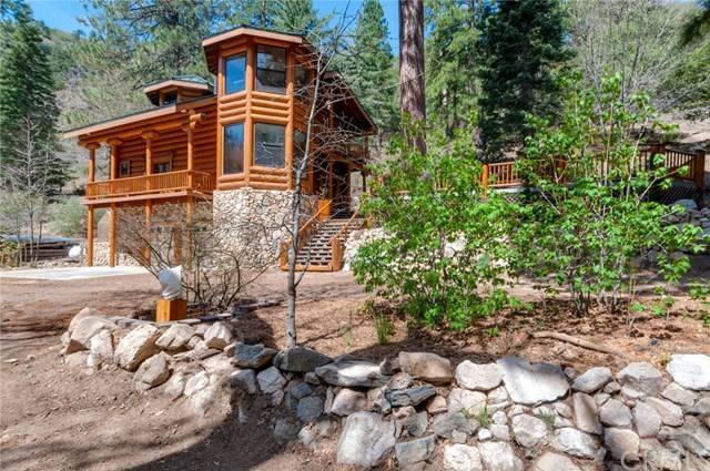 6200 Mountain Home Creek Road, Angelus Oaks, CA 92305 (#EV21092192) :: The Costantino Group | Cal American Homes and Realty