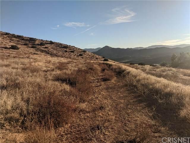 0 Vac/Hypotenuse Rd/Vic Sierra, Acton, CA 93510 (#SR21093090) :: RE/MAX Empire Properties