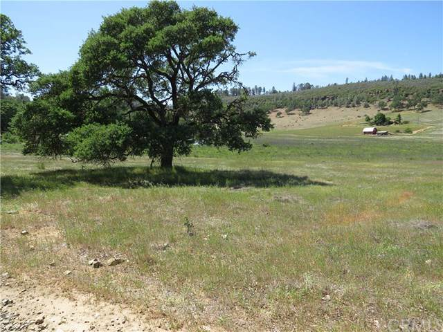18640 Diamond Ridge Road, Lower Lake, CA 95457 (#LC21093102) :: Team Forss Realty Group