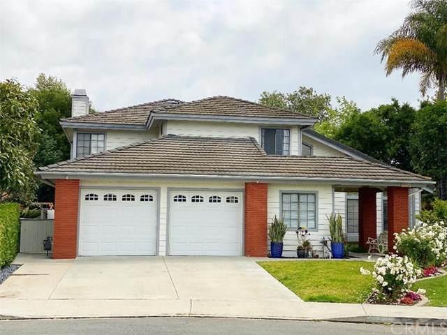 33356 Coral Reach Street, Dana Point, CA 92629 (#OC21093143) :: Plan A Real Estate