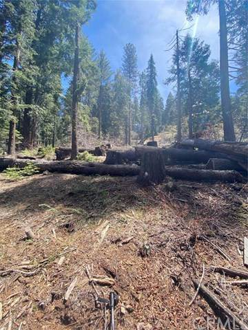 7410 Yosemite Park Way - Photo 1