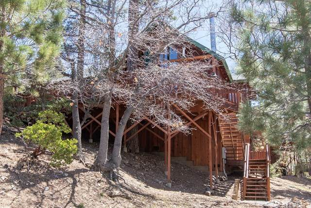 449 Suncrest Court, Big Bear, CA 92314 (#PW21093776) :: The Costantino Group | Cal American Homes and Realty