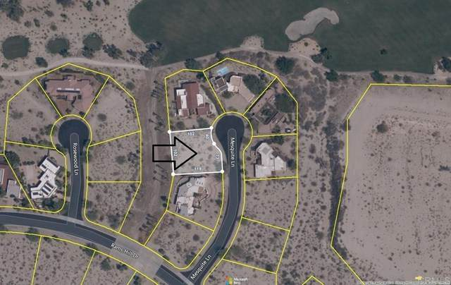 Mesquite Lane, Borrego Springs, CA 92004 (#NDP2104844) :: Compass