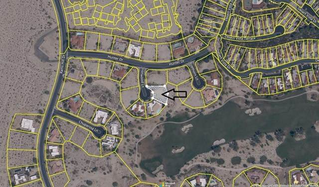 Ironwood Lane, Borrego Springs, CA 92004 (#NDP2104846) :: Compass