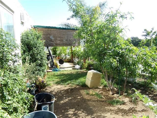 30000 Hasley Canyon Road#30, Castaic, CA 91384 (#SR21094628) :: Cesi Pagano & Associates