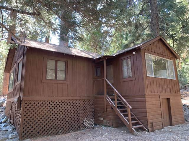 9630 Falls Road, Forest Falls, CA 92336 (#EV21095253) :: The Costantino Group | Cal American Homes and Realty