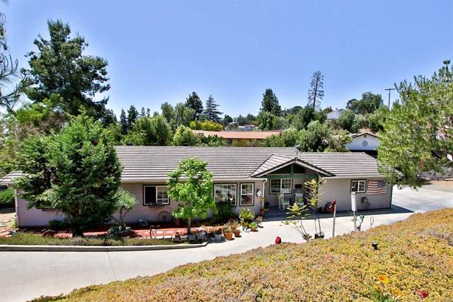 4134 Conrad Dr, Spring Valley, CA 91977 (#PTP2103054) :: Power Real Estate Group