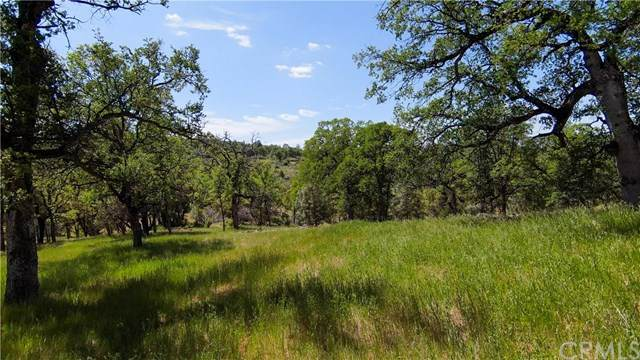 123 Rancheria Creek Road, Midpines, CA 95345 (#MP21095892) :: Mainstreet Realtors®