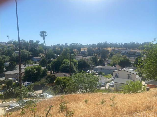 3726 Lomitas Drive, Los Angeles (City), CA 90032 (#SR21096256) :: Team Forss Realty Group