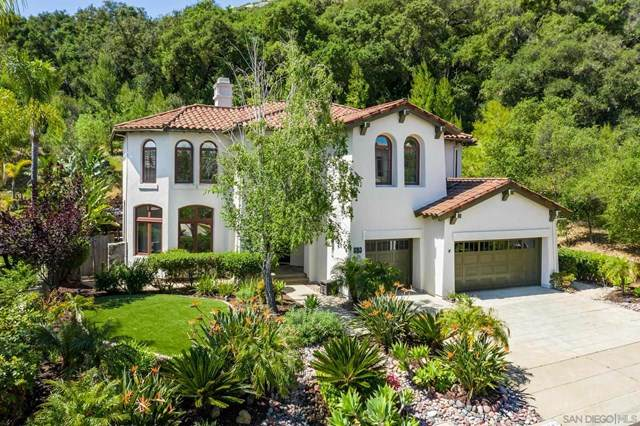 15983 S Woodson Dr, Ramona, CA 92065 (#210012025) :: The Costantino Group | Cal American Homes and Realty