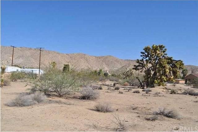 56290 C Coyote Trail, Yucca Valley, CA 92284 (#EV21096721) :: Team Tami