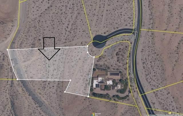 Trail Shrine Lane, Borrego Springs, CA 92004 (#NDP2104958) :: Compass