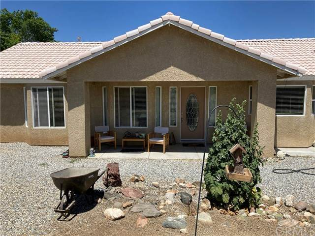 4356 Nielson Road, Phelan, CA 92371 (#IV21096416) :: Team Forss Realty Group
