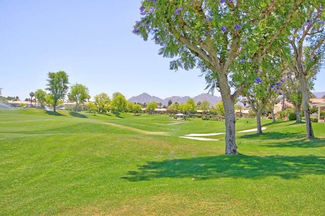 356 Tomahawk Drive, Palm Desert, CA 92211 (#219061647DA) :: The Costantino Group | Cal American Homes and Realty