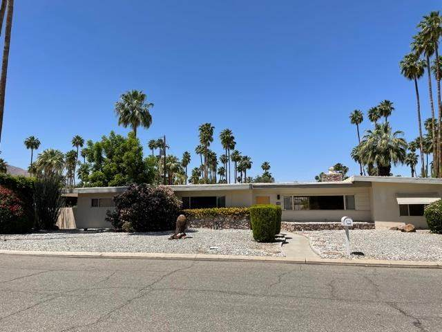 1440 Palm Tree Drive, Palm Springs, CA 92264 (#219061648PS) :: Steele Canyon Realty