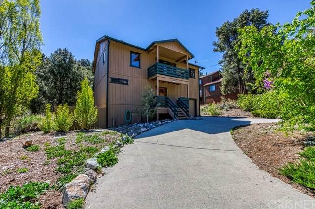 2520 Glacier Drive, Pine Mountain Club, CA 93225 (#SR21096524) :: RE/MAX Empire Properties