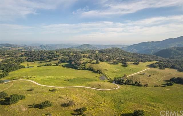 25685 Black Canyon Road, Santa Ysabel, CA 92070 (#ND21097422) :: Team Forss Realty Group
