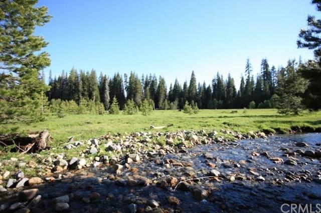 10 AC Beasore Road, Bass Lake, CA 93604 (#FR21097563) :: Legacy 15 Real Estate Brokers
