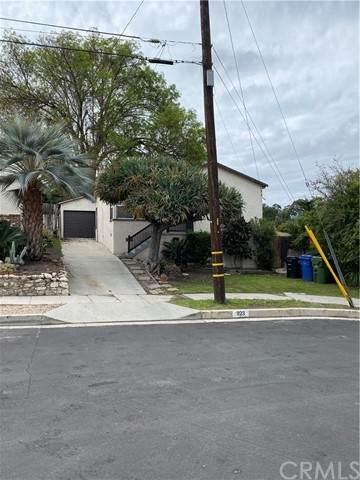 923 N Leland Avenue, San Pedro, CA 90732 (#SB21097597) :: Go Gabby
